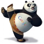 google panda update - meaning for bloggers and marketers